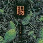 CD賜(たぼーられ)